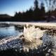 Kjersti Vick, Frost Flower on Caribou Lake in Lutsen